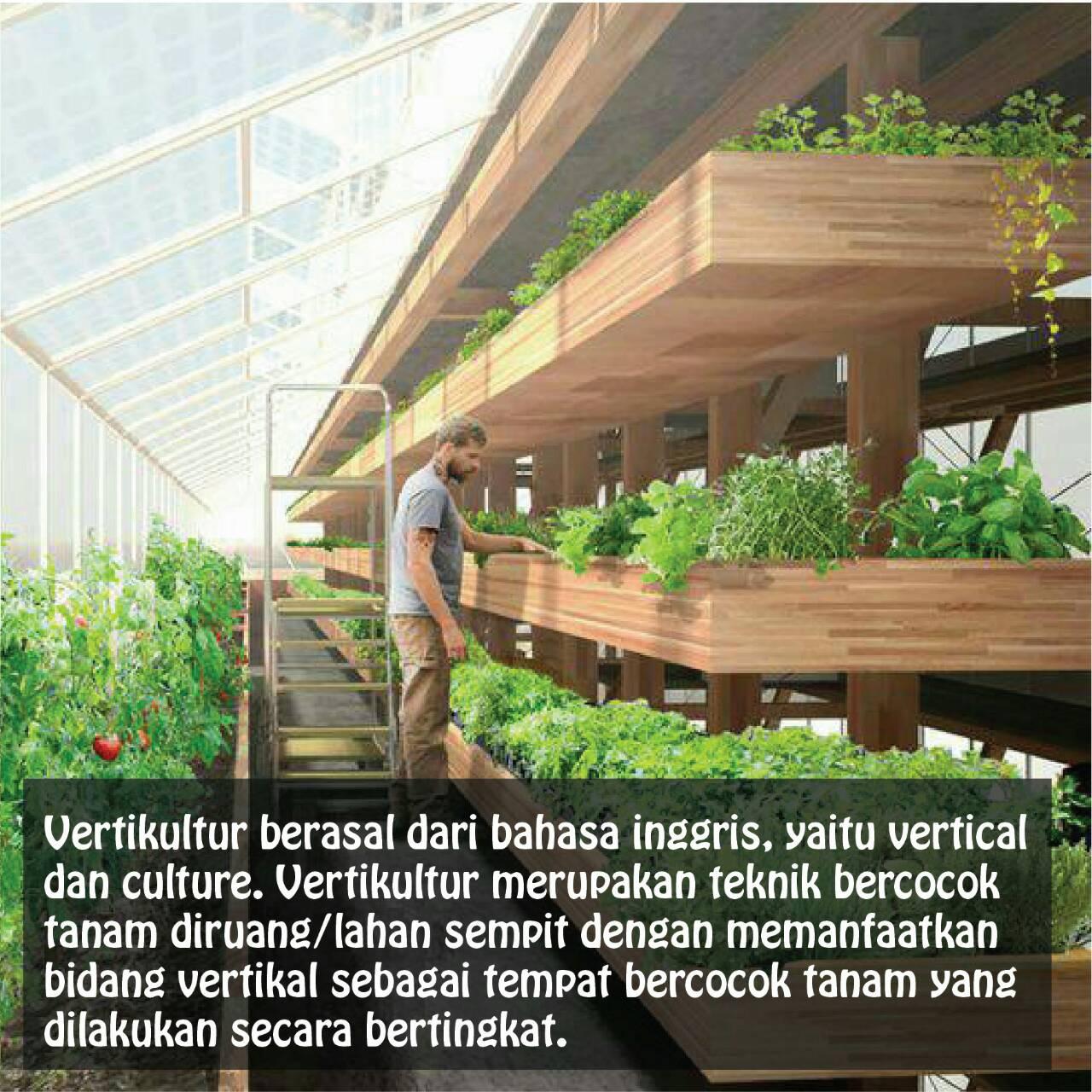 It's A Plant Time: VERTIKULTUR – HIMAGRO FAPERTA UNPAD